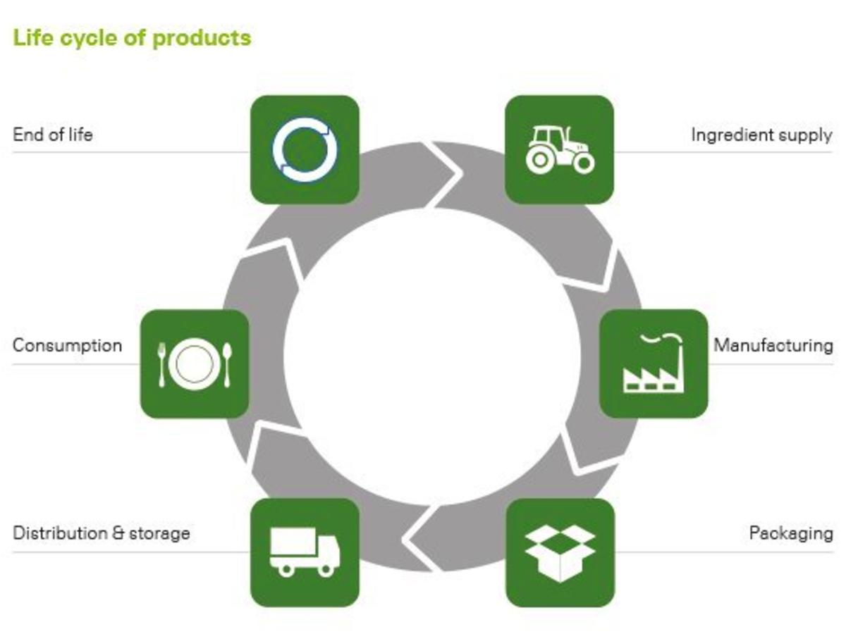 detailing product life cycles essay Custom product life cycle management essay product life cycle management deals with the process of management of an entire cycle of a product from when it is conceived through its designing and manufacturing, to servicing and disposal.